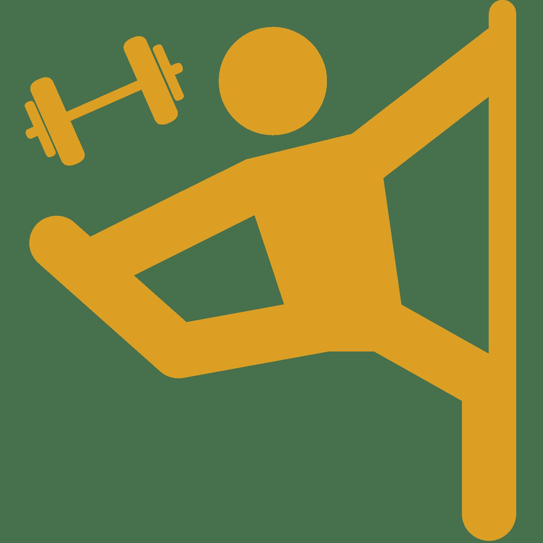 icone abonnement pole dance et fitness
